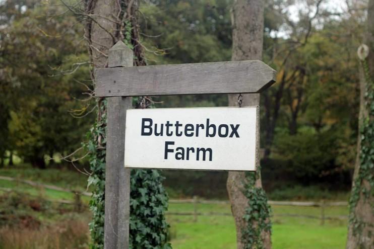 Butterbox farm